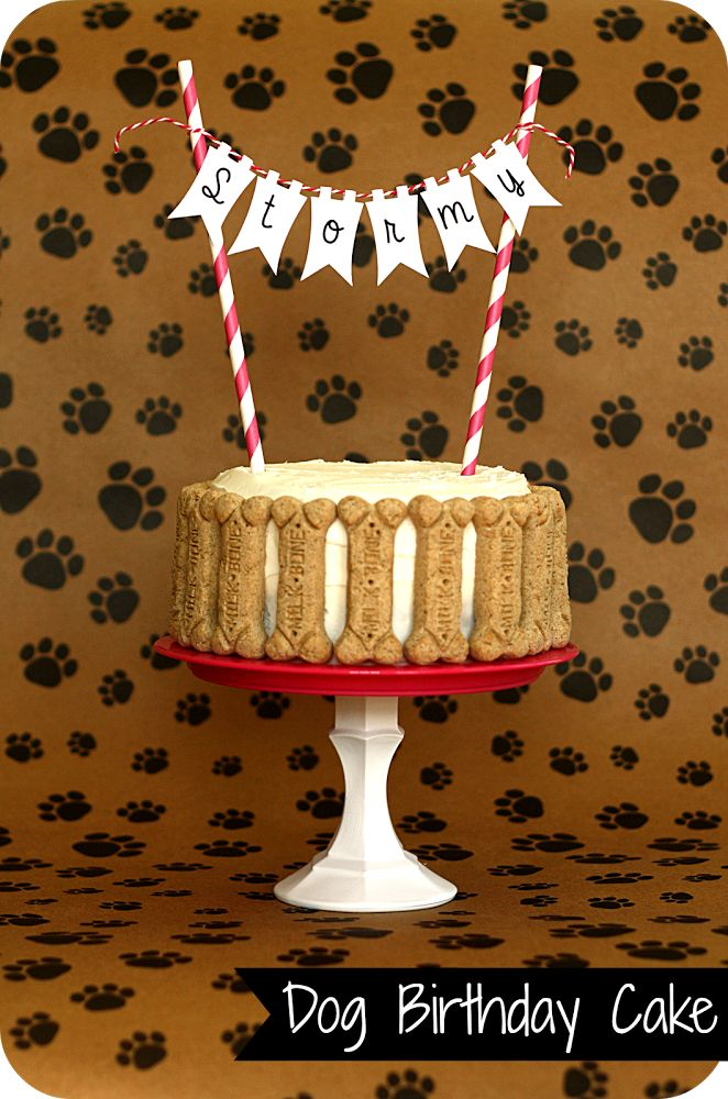 Keeping My Cents ¢¢¢: Dog Birthday!