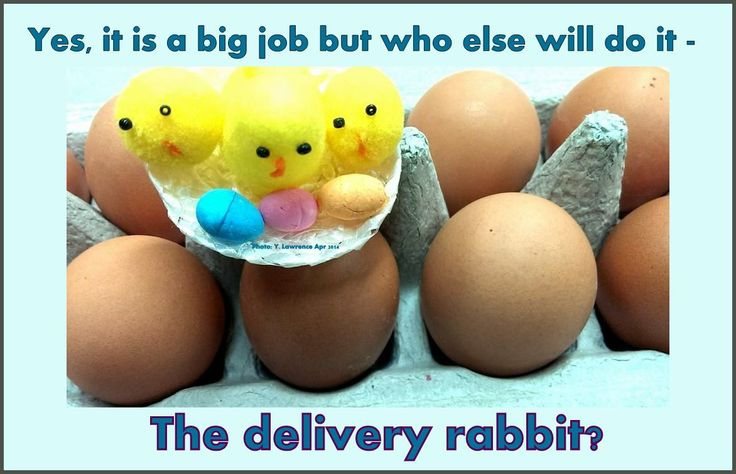 That #EasterBunny  he is so busy with his job he has no time to help us