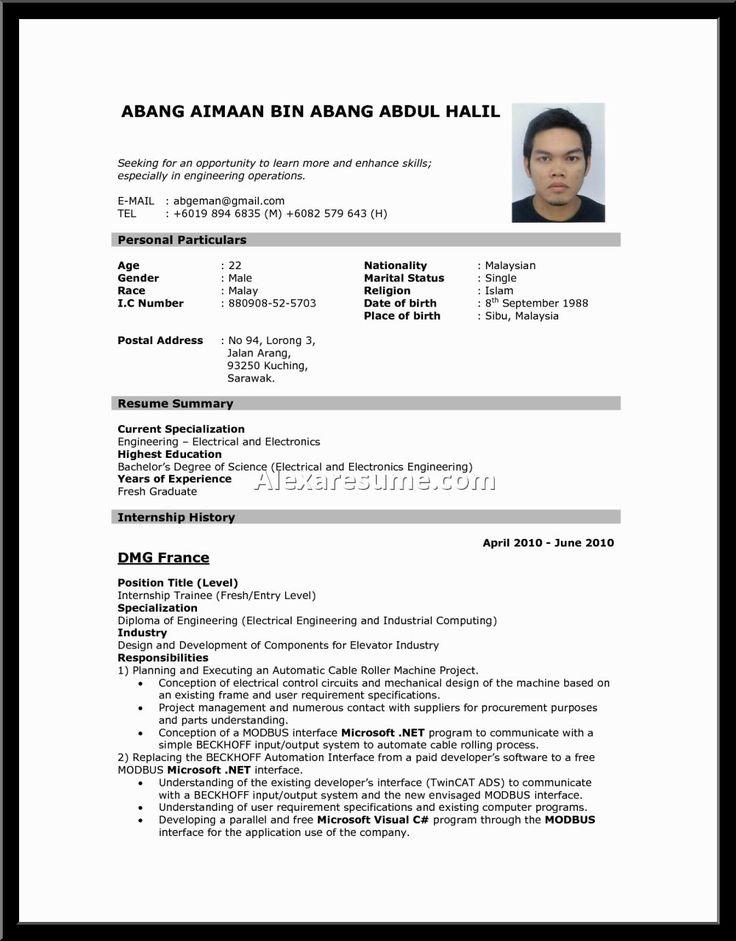 Resume Resume Example In Malaysia best 25 standard resume format ideas on pinterest cv sample examples standard