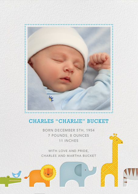 23 best Baby Birth Announcement Ideas images – Online Baby Birth Announcements