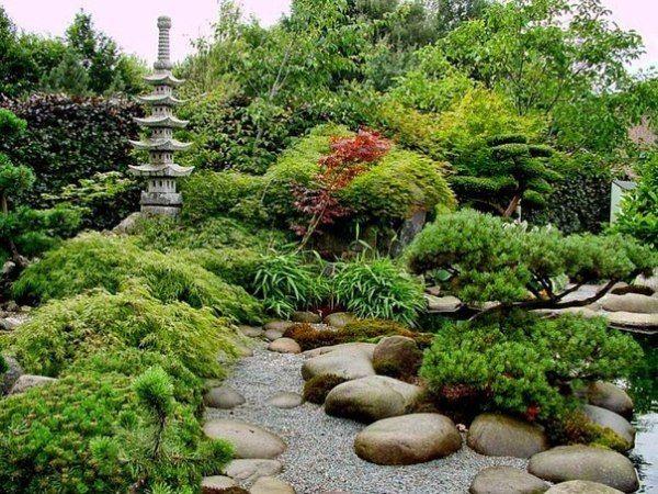 Вечнозеленый сад, не требующих особых хлопот