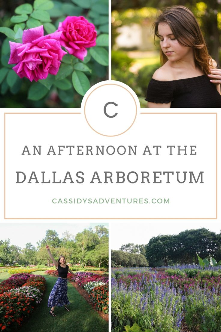 The Dallas Arboretum is located in east Dallas, and offers 66-acres (267,000 m²) of botanical gardens. From the infinity pool, it is possible to view the downtown Dallas skyline.