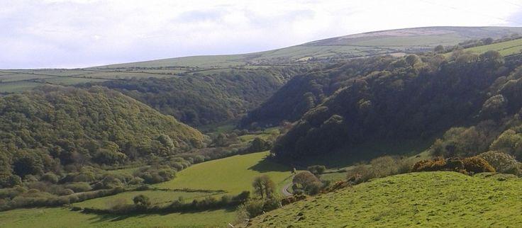 Steeple View | Bed & Breakfast and Retreat in Newport, Pembrokeshire