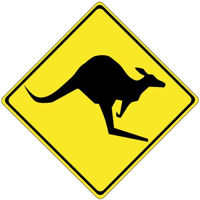 Mięso z kangurów