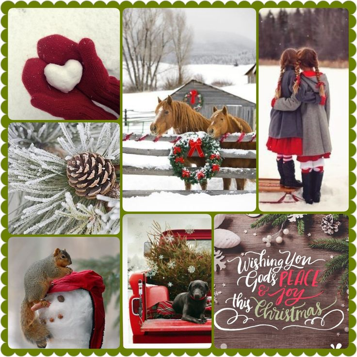 Wishing you God's peace & joy this Christmas.  Red & white winter snow collage by D. Welsh. Country farm vintage reds.