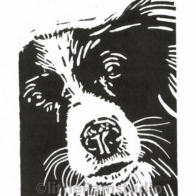 Collie Dog - Original Hand Pulled Linocut Print £15.00