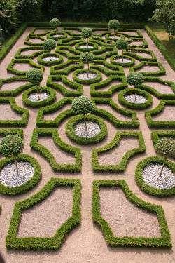 Sweet Topiary Garden!