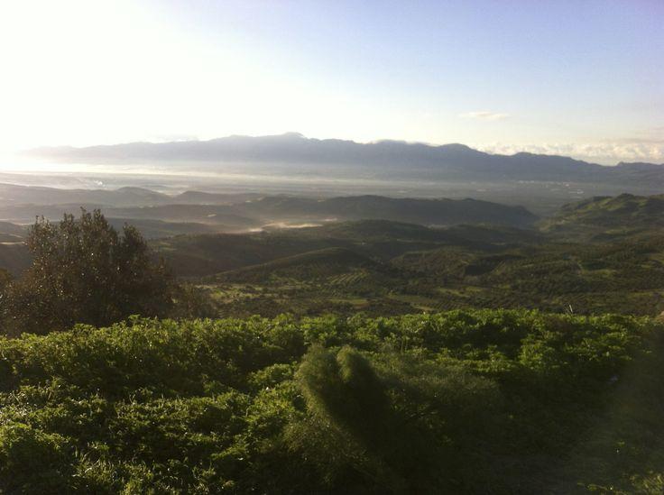 Misty morning over the Messara, Crete