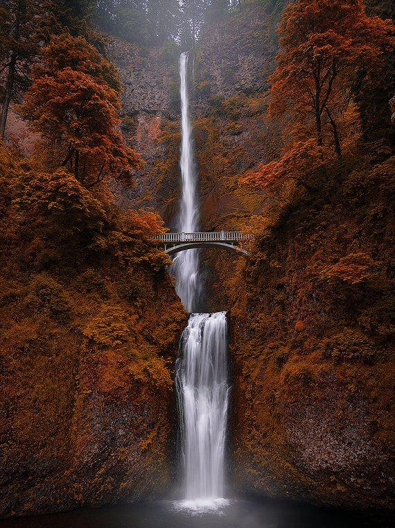 Chutes de Fondcombe, Multnomah, chute d'eau, Gorge du Columbia, feuilles, Oregon, côte nord-ouest du Pacifique, - photographie de voyage, impression, Art mural