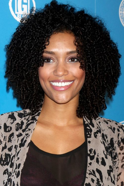 Awe Inspiring 1000 Images About Natural Hair Pictures On Pinterest Natural Hairstyles For Women Draintrainus