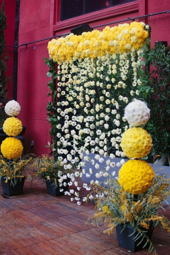 The 25+ Best Flower Curtain Ideas On Pinterest | Hanging Flowers, Flower  Installation And Baby Photos With Flowers