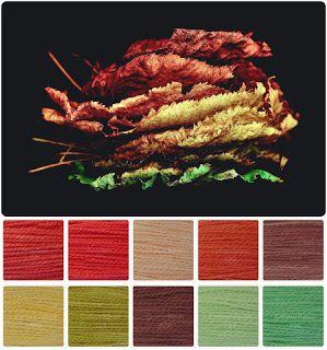 ColourSpun: ColourSpun Colourways - Autumn Leaves