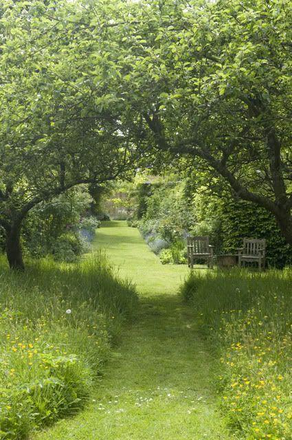 idee voor bij chalet; omring door twee bomen die naar elkaar buigen, pad door diepe gras, doorkijk