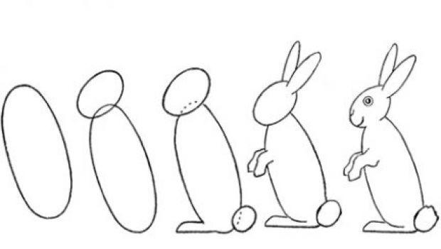 Disegni per bambini: imparare a disegnare un coniglietto