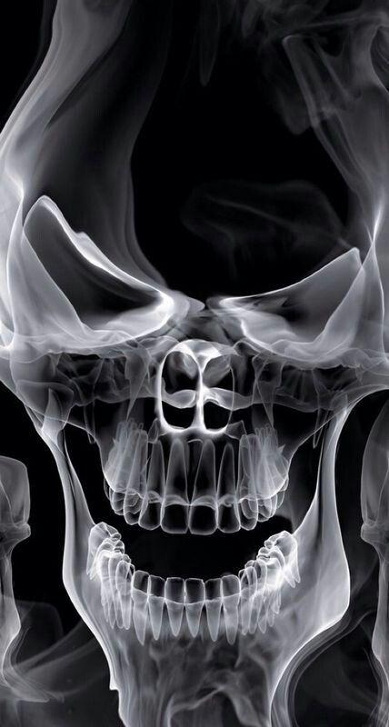 10 Best Skull Images On Pinterest