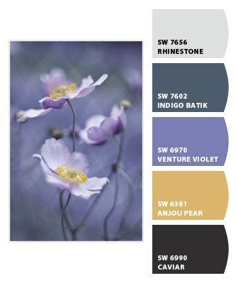 "violet, indigo, off white, black, ""anjou pear"""