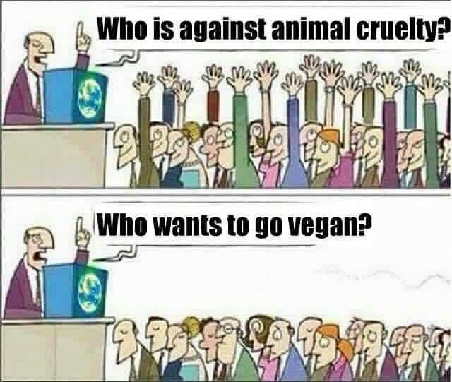 Against Animal Cruelty? Win by brianh09 - Meme Center |Anti Animal Rights Memes