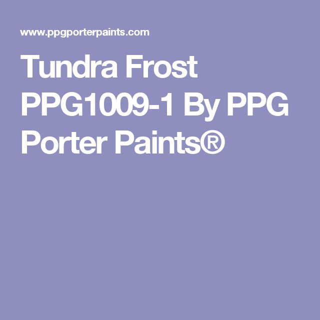 Tundra Frost PPG1009-1 By PPG Porter Paints®