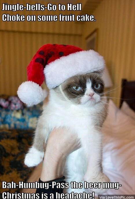 Funny Grumpy Cat Christmas Meme