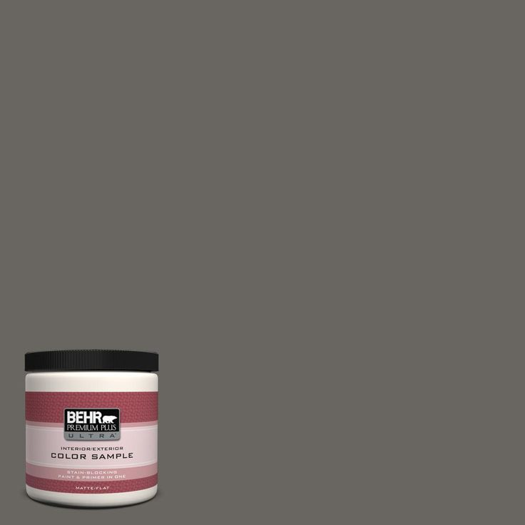 BEHR Premium Plus Ultra 8 oz. #PPU24-03 Chinchilla Interior/Exterior Flat/Matte Paint Sample