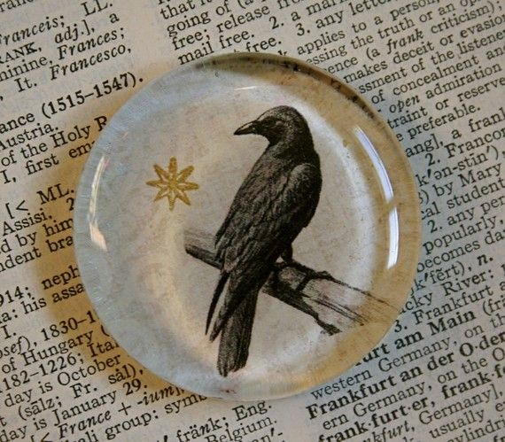 Nevermore!  Raven / crow large glass magnet, by CrowBiz.  More Halloween items - click through ~