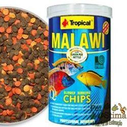 Aproveitem!  RAÇÃO PARA PEIXE MALAWI CHIPS 130G TROPICAL por R$52,54*  A ração para peixes MALAWI CHIPS da TROPICAL é um alimento multi-ingrediente, em forma de flocos, com alto teor de materiais vegetais (espinafre, urtiga, Spirulina, gérmen de trigo) para a alimentação diária de Ciclídeos Malawi do grupo mbunas, jovens e adultos.  http://www.petstima.com.br/product_info.php?products_id=18769  * Valor referente para pagamento via Transferência ou Depósito.