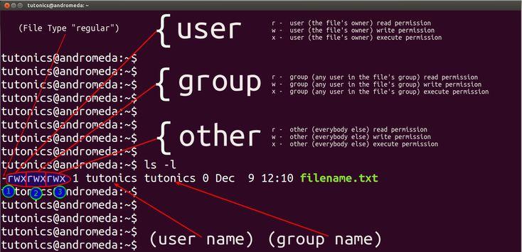 Linux File Permissions, chmod, & umask - Tutonics