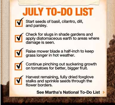 Monthly To-Do List  Home Depot and Martha Stewart combined? I think YES!