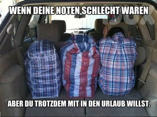 Noten schlecht #derneuemann #humor #lustig #spaß #schule