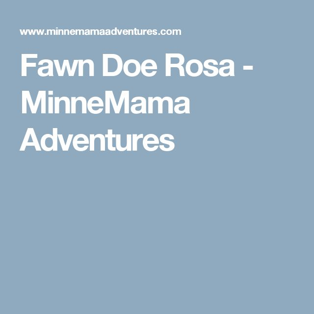 Fawn Doe Rosa - MinneMama Adventures