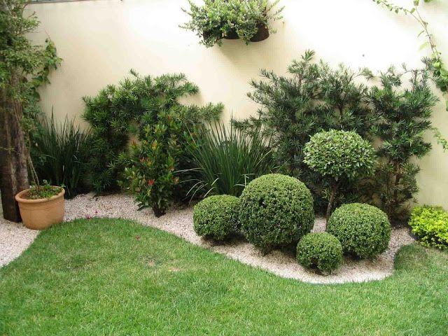 plantas-para-jardim-buxinho-1024x768.jpg (640×480)