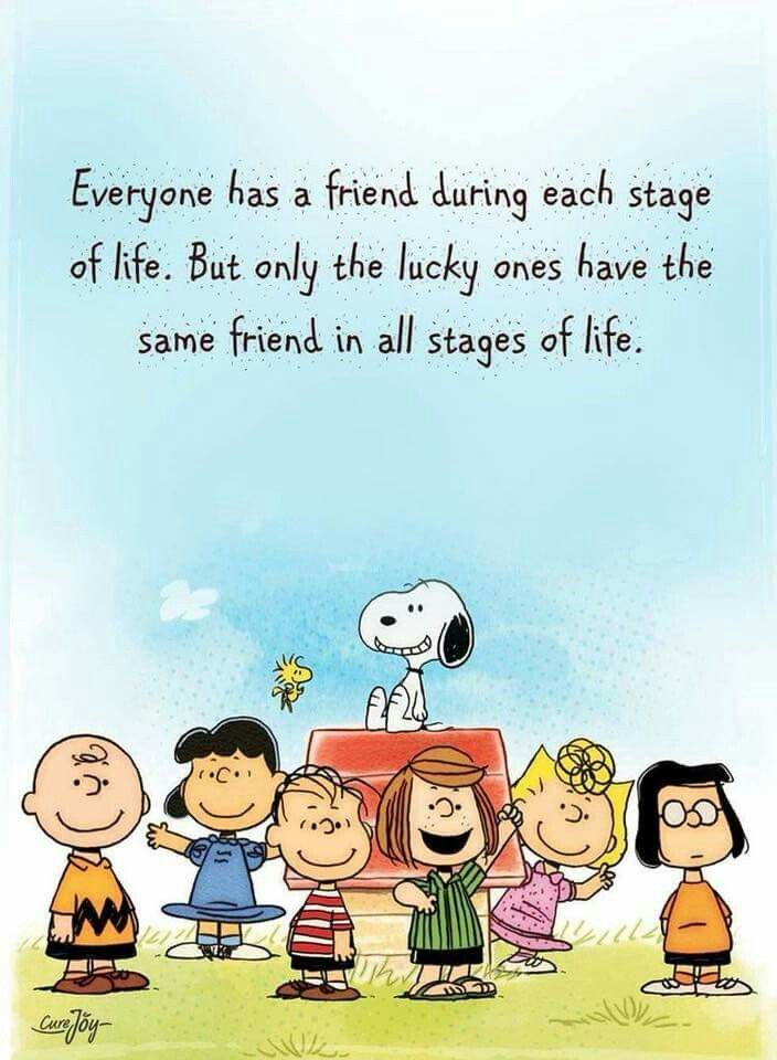 Pin By Connie On Peanuts Charlie Brown Quotes Snoopy Quotes Charlie Brown And Snoopy