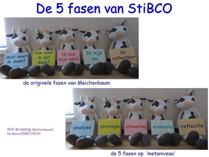 De 5 fasen van Meichenbaum, zowel de originele fasen als de fasen zoals bedoeld op meta-niveau. Uit de training van StiBCO.