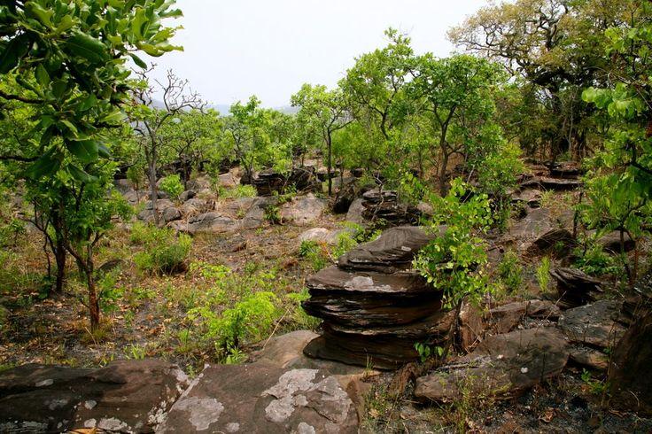 Kiwakishi caves