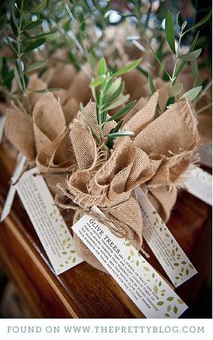 L'olivera un detall de boda molt especial. Per més informació: http://viulolivera.com