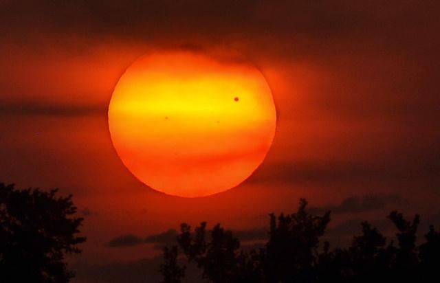 Venere transita davanti al Sole