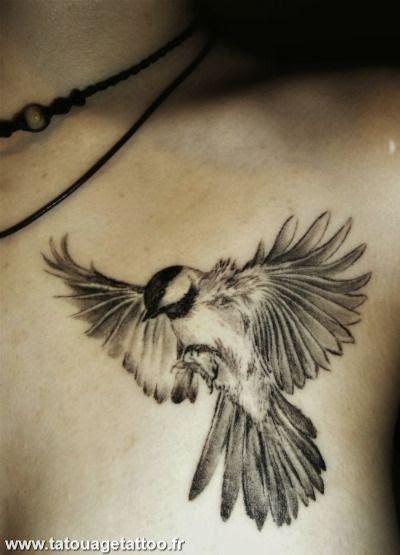 Photos dessin oiseau pour tatouage page 8