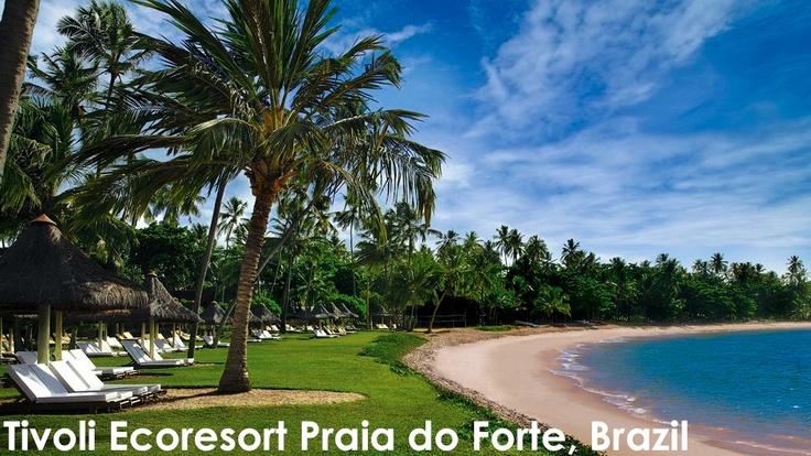 Love Travel. My dream destination is Brazil. #kiwibemine