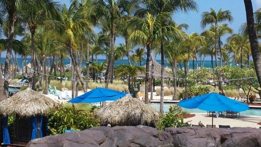 Radisson Resort & Casino in Aruba - The nicest people with the most beautiful beach! You'll never want to leave...
