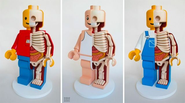 "Jason Freeny's Giant Dissected Lego Men.... I've been itching for months to post the work of Manhattan-based designer and artist Jason Freeny who creates delightfully morbid dissections of toys and other pop culture characters. His most recent creation is this triptych of three 18″ tall lego men who have been surgically ""cut"" to reveal their mysterious, Lego anatomy. Freeny acquires actual 18″ novelty toys sold by Lego and then creates the organs and bones using sculpted foam."