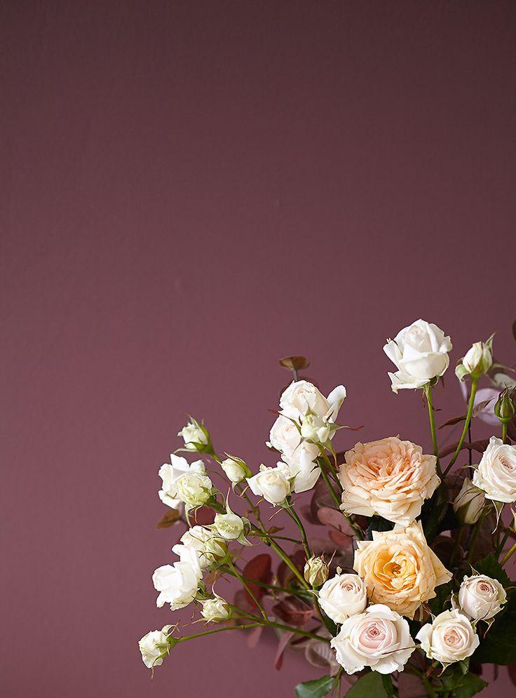 Die besten 25+ Feine farben Ideen auf Pinterest Alpina wandfarbe - farben fur die wand schlafzimmer