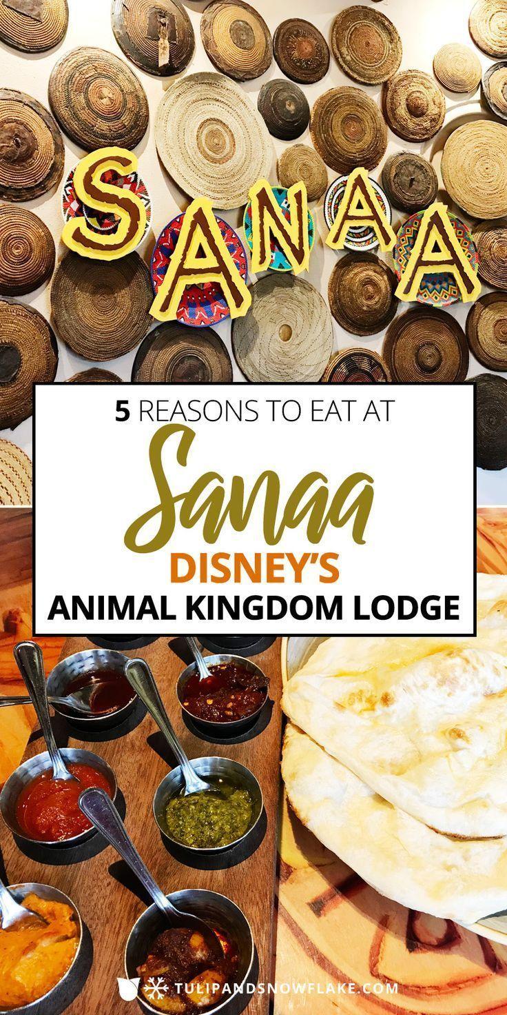 5 Reasons To Eat At Sanaa In Disney S Animal Kingdom Lodge Disney Animal Kingdom Lodge Animal Kingdom Disney Animal Kingdom Lodge
