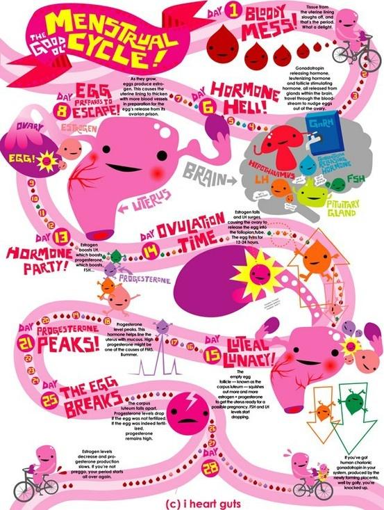 The Shiny Happy Menstruation Story. | elephant journal