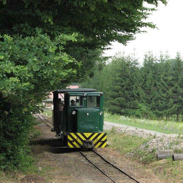 Almamelléki Kisvasút  http://www.turabazis.hu/latnivalok_ismerteto_4654 1900-ban elkészült a Szigetvárt, Kaposvárral összekötő vasútvonal, a terület akkori birtokosa Báró Biedermann Rezső ekkor határozata el, hogy kisvasutat építtet, hogy a kitermelt fát az Almamelléki Állomásra tudja szállítani. 1901.-ben készült el a kisvasút 600 mm-es nyomtávolsággal. . Ma a kisvasút a 6 km hosszú sasréti fő és az 1,4 km hosszú lukafai mellékvonalon közlekedik.  #latnivalo #almamellek #turabazis