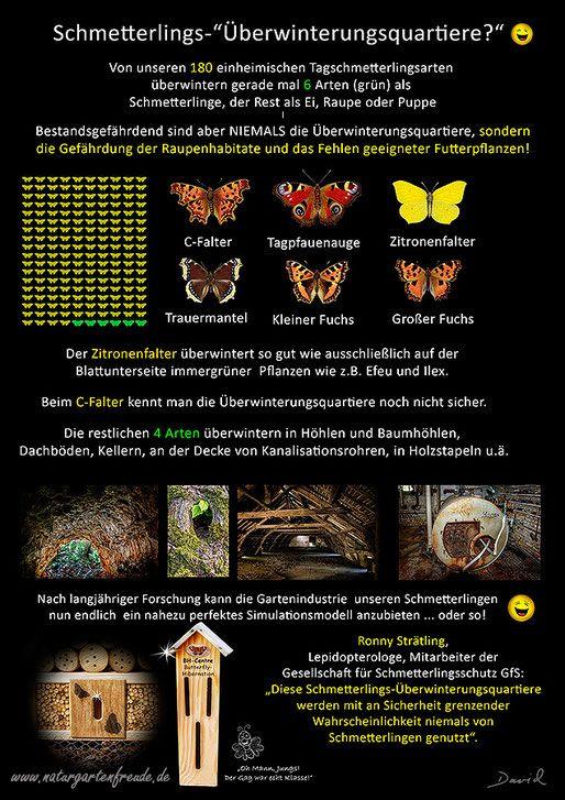Insektenhotel insect hotel Nisthilfe nesting aid Insektennisthilfe Schautafel poster Schmetterling butterfly Überwinterung Hibernation bug house Kleiner Großer Fuchs C-Falter Tagpfauenauge Zitronenfalter Trauermantel