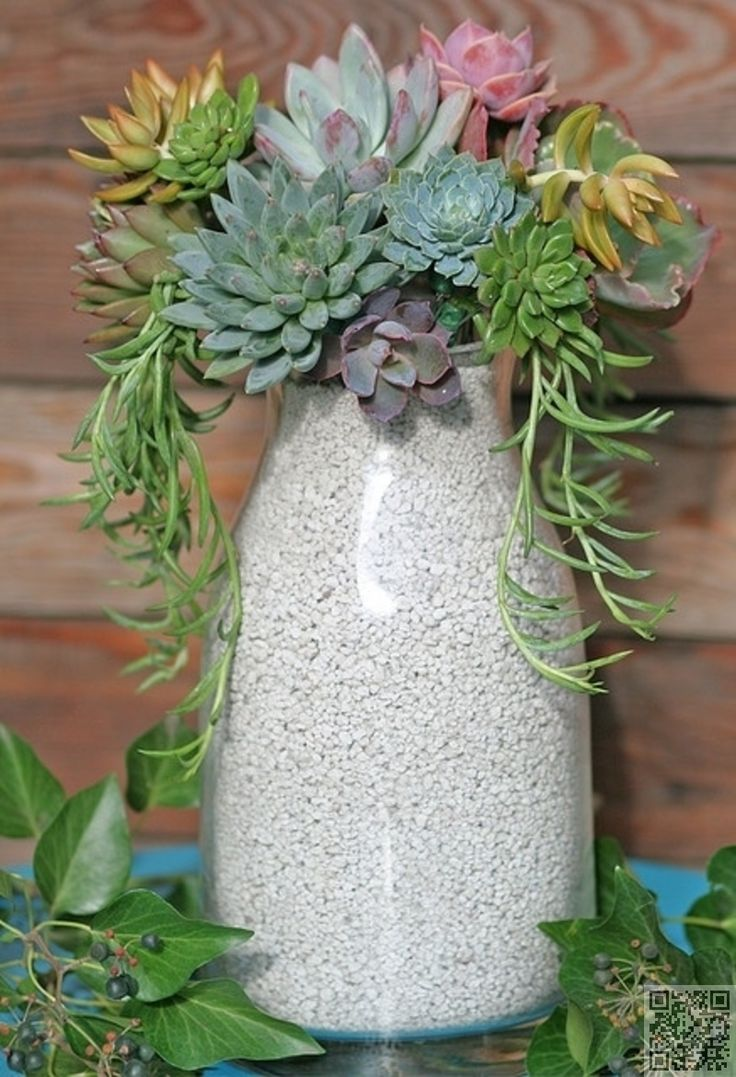 Tall #Container - 43 Outstanding #Succulent Gardens You Can #Create at