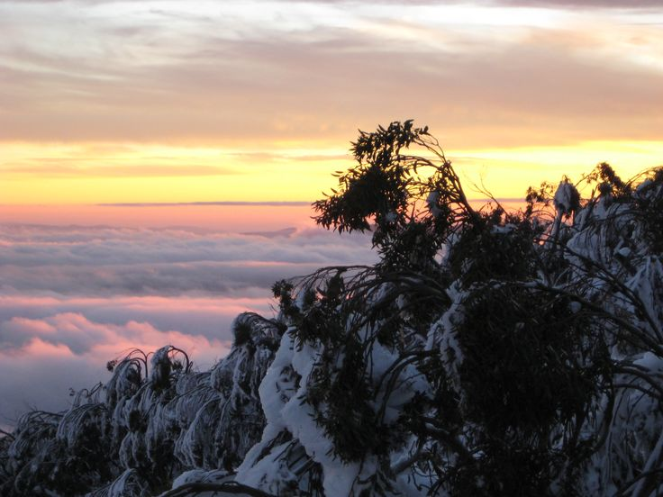 Sunset above the clouds at Mt Baw Baw, Victoria, Australia.