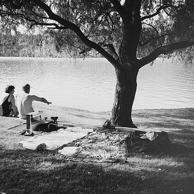 Love at lake