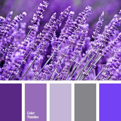 Color Palette 2337 Mosquito Repelling Plants Lavender