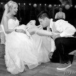 http://www.joymay.net/san-francisco-city-hall-wedding-photographer/san-francisco-wedding-photographers-ca-94108/      san   francisco   city   hall   wedding   photographer   san   francisco   wedding   photographers   ca   94108